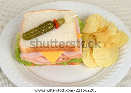top view chicken sandwich with potato chips