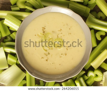 Top view of a celery soup surrounded with fresh vegetables - stock photo