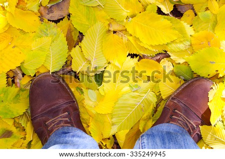 Top view of a man's feet in shoes, which stands in the autumn lawn covered with yellow fallen leaves linden.
