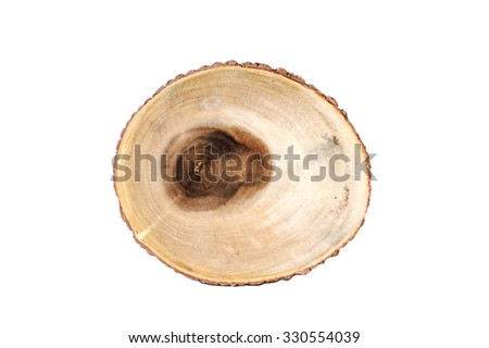 Top view of a tree stump isolated on white background, Made from Tree Trunk - stock photo