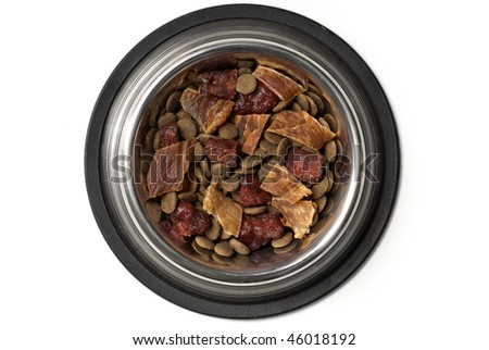 Top view of bowl of dog food isolated on white with clipping path