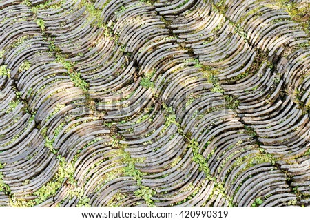 Top view of curve shape stone path arrange in line on floor in rural park - stock photo