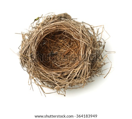 Top view of empty bird nest isolated on white - stock photo