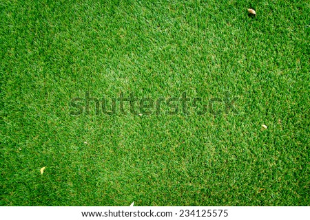 Top view of Fallen leaves on Artificial Grass - stock photo