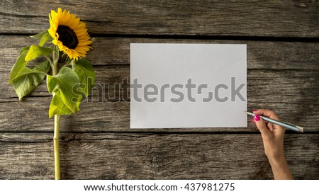 Top view of female hand with pink manicure holding a pen to write on a blank piece of white paper with beautiful sunflower lying next to it on a textured wooden desk. - stock photo