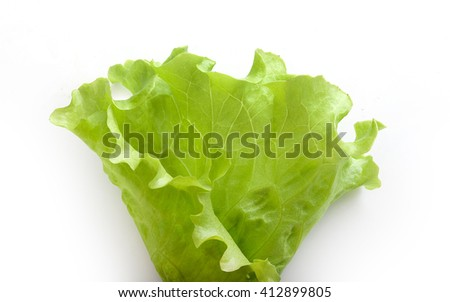 Top view of fresh green lettuce on the white background