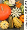 Top view of squash and pumpkins on wooden floor - stock photo
