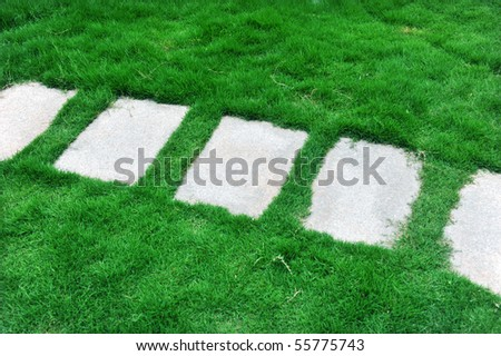 top view of stone path in garden. - stock photo