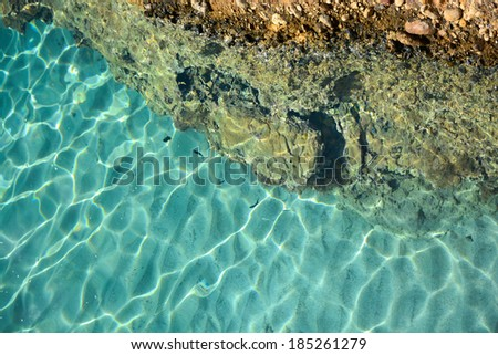 Top view of the Aegean sea and fish, Greece, Crete. - stock photo