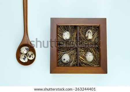 top view of the quail eggs in a wooden box on a blue background - stock photo