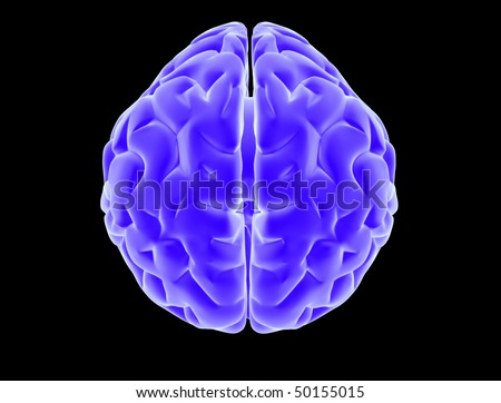Top view of x ray brain - stock photo