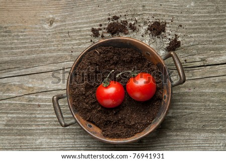 Top view on tow fresh cherry tomato on the ground in old metal bowl - stock photo