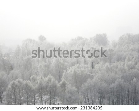 Top view to the forest in the fog covered hoarfrost, winter icy background, Kolomenskoe, Moscow, Russia. - stock photo