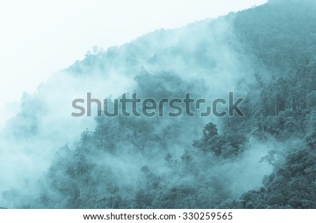 Top view which can see Fog covering the mountain forests - stock photo