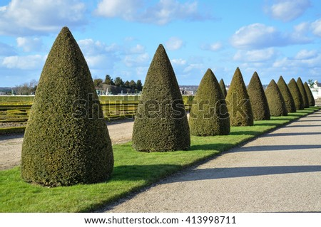 Topiary trees at Versailles garden - stock photo