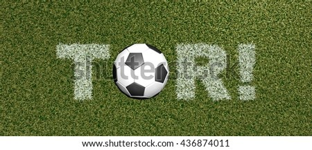 TOR - German for GOAL - grass letters on football field3D rendering