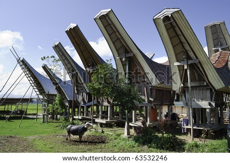 Toraja rural family traditional housing in Indonesia