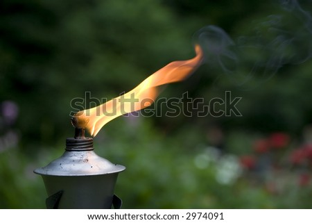 Torch in a garden - stock photo