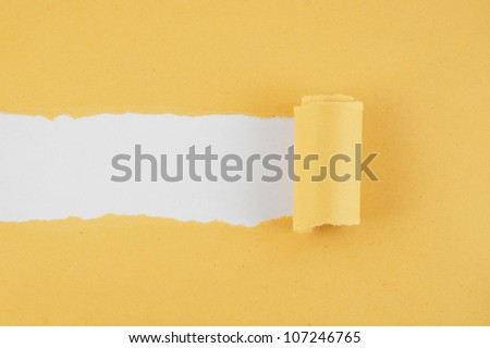 Torn brown paper with gray background - stock photo
