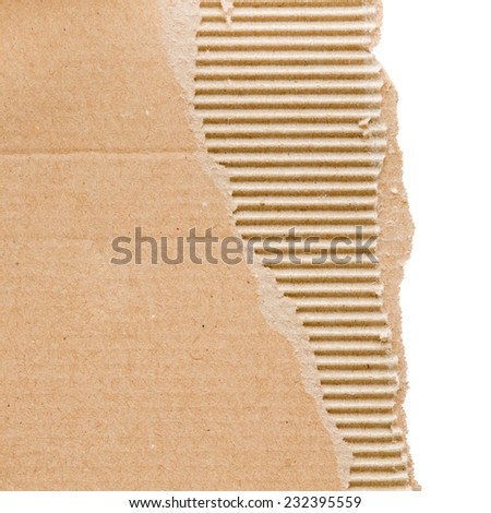 torn cardboard sheet isolated on white with place for text - stock photo