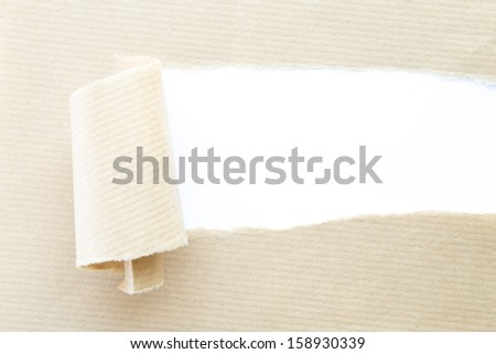 torn corrugated paper with white background - stock photo