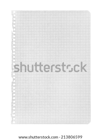 torn page in a cage on an isolated white background - stock photo