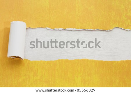 Torn paper background with texture and copy space for your text - stock photo