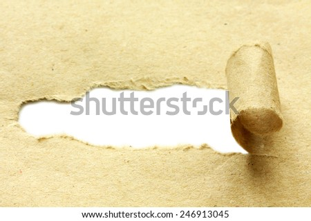Torn paper. Isolated on white