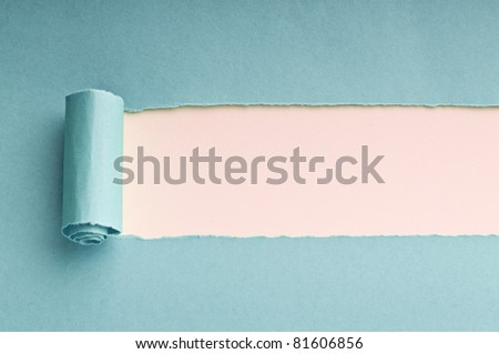 Torn paper with space for your message - stock photo