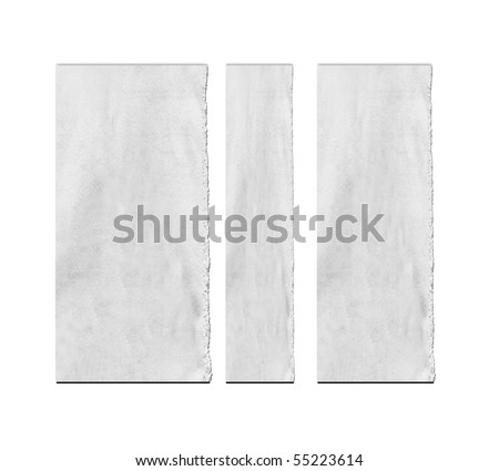 Torn Real Paper Scraps On White Background - stock photo