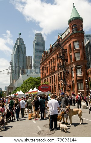 TORONTO, CANADA – JUN 12: Dog lovers gather at Woofstock, the largest outdoor festival for dogs in North America since 2003, in the St. Lawrence Market Neighborhood June 12, 2011 in Toronto, Ontario. - stock photo