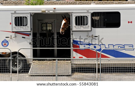 TORONTO-JUNE 23: A police horse stands in a trailer near the Metro Toronto Convention Centre on June 23, 2010 in Toronto. The G20 Summit will be held at the venue. - stock photo