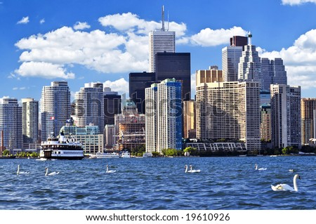 Toronto waterfront with white swans in the harbour - stock photo