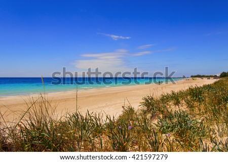 Torre Pali beach (Lecce). ITALY (Apulia).The low sandy coastline is characterized by dunes covered with Mediterranean scrub. - stock photo