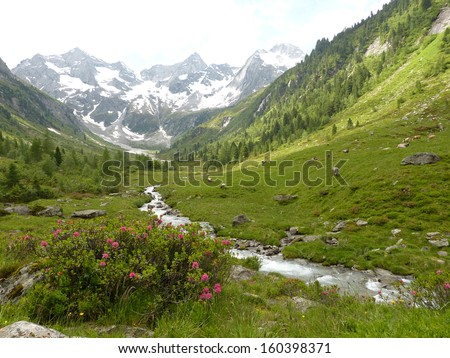 Torrent in the high mountains - stock photo