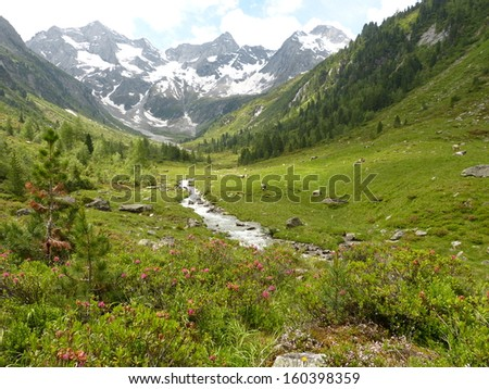 Torrent in the high mountains valley - stock photo