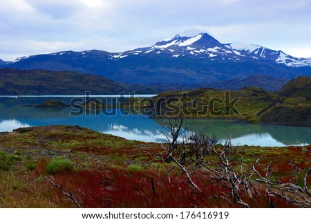 Torres del Paine National Park, near Puerto Natales, Patagonia, Chile - stock photo