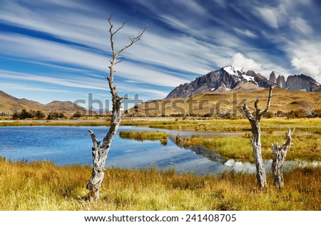 Torres del Paine National Park, Patagonia, Chile - stock photo