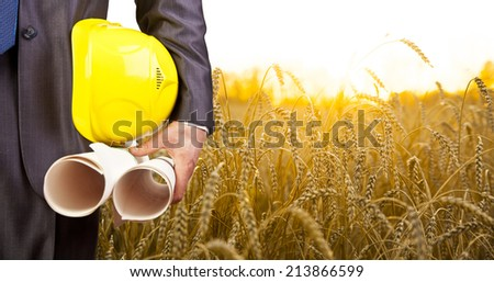torso engineer or worker hand holding yellow helmet for workers security and blueprint paper plan against the background of yelloe sunset reap wheat field and sunrise sky and forest in perspective - stock photo