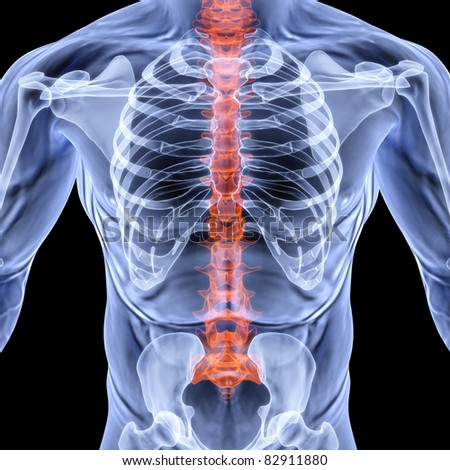 torso men under X-rays. backbone is highlighted in red. isolated on black. - stock photo