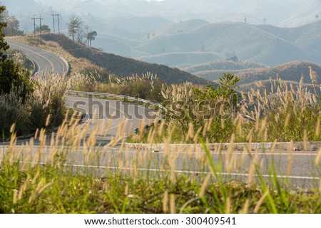 Tortuous road on top of the mountain with beautiful wild flower along side, Nan province, Thailand  - stock photo