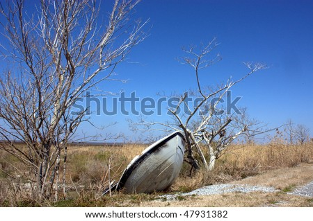Tossed about by Hurricane Katrina, this boat remains abandoned in marshlands killed by saltwater - stock photo