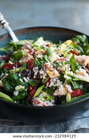 Tossed salad with tuna, rice and vegetables - stock photo