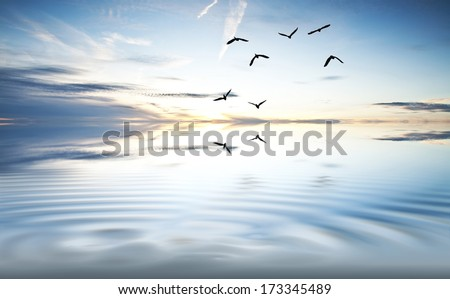 total calm in the ocean - stock photo