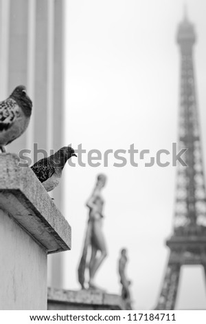 Tour Eiffel and the pigeons on a background of foggy sky - stock photo