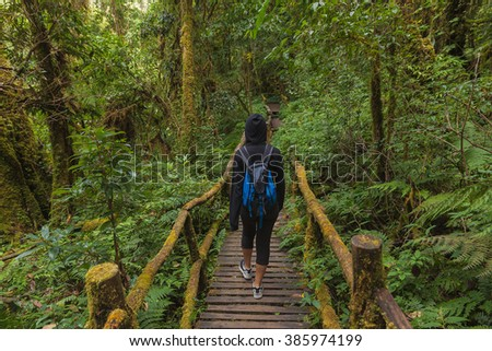 Tourist at wooden bridge in forest at Doi Inthanon National Park, Thailand.