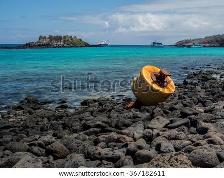 Tourist boats and turquoise bay, Santa Fe Island, Galapagos Islands - stock photo