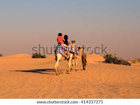Tourist camel safari on sand dunes on the desert outdoor