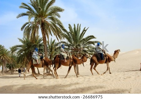 Tourist caravan in Sahara desert. Tunisia - stock photo