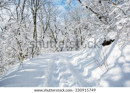 Tourist footpath in snowy winter landscape. Seasonal natural scene. - stock photo